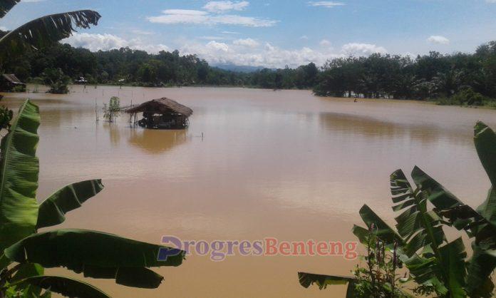 Puluhan hektar sawah terendam